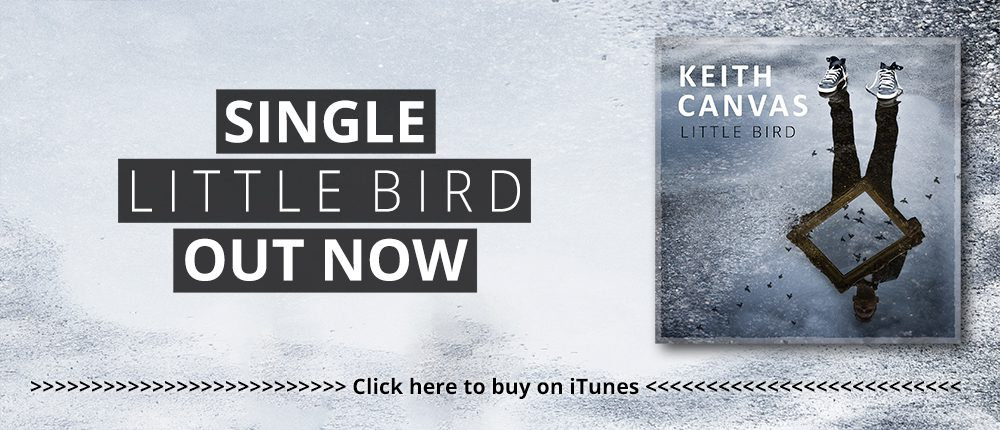 Little Bird out now